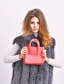 Fashion Stylish Accessory. Fashion And Shopping Concept. Female Stylish Fashion Model. Woman In Fur  poster