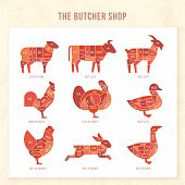 Vintage Restaurant Meat Menu Template. American Scheme Of Pork Cuts, Chicken Cuts And Beef Cuts, Han poster