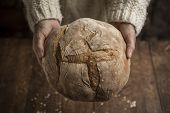 Bread, Woman Hands Holding Freshly Baked Sourdough Bread On Rustic Background. Horizontal With Copys poster