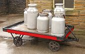 Vintage Milk Churns.
