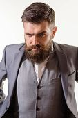 Stylish Handsome Business Man. Attractive Bearded Man Portrait. Handsome Man With Beard. Male Fashio poster