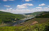 Panorama Of The Rhine Valley