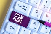 Word Writing Text Scam Alert. Business Concept For Warning Someone About Scheme Or Fraud Notice Any  poster