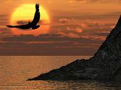 Eagle And Fantastic Sunset