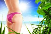 stock photo of woman g-string  - Close up view of nice smooth woman - JPG