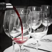 pouring french red wine