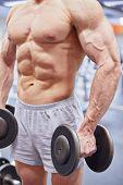 Muscular torso and hands with dumbells of man standing half-turned in gym hall