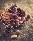 Pine Cone, Cinnamon And Nuts For Christmas Decoration