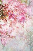 Background with dreamy wisteria flowers