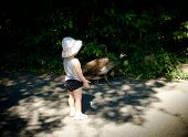 Little girl looking at a pheasant in a zoo