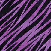 Violet Zebra Print