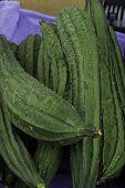 Silk Squash/Chinese Okra