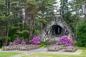 picture of pews  - An outdoor church with wooden pews and flowers - JPG