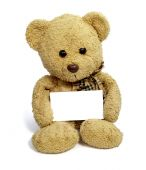 Teddy Bear With Blank Note Card