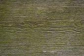 Weathered Wood Planks