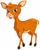 Illustration of a little deer on a white background