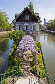 Water Canals On Grand Ile Island In Strasbourg, France