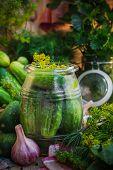 Jar Pickles Other Ingredients Pickling