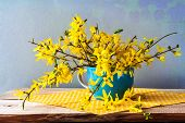Still Life Spring Bouquet Yellow Forsythia