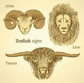 Sketch Zodiac Signs