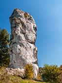 Limestone rock formation called Maczuga Herkulesa, Pieskowa Skala in the area of Krakow-Czestochowa
