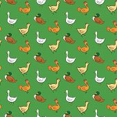 Funny seamless pattern with geese, ducks, cocks, chickens on green background
