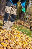 Raking The Leaves During Autumn Time