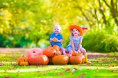 stock photo of baby cowboy  - Happy children at pumpkin patch during Halloween little girl in a blue dress boots and cowboy hat and baby boy having fun together trick or treating on a sunny autumn day