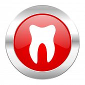 tooth red circle chrome web icon isolated