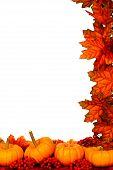 Autumn corner border