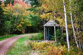 Fall walking trail and covered picnic table in rural Prince Edward Island, Canada