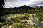 Amasing Alaska