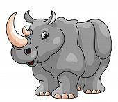 Rhino Cartoon Illustration