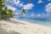image of samoa  - Tropical Samoa with white sandy beaches and coconut palms - JPG