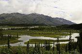 Alaska stream