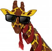 Giraffe In Sunglasses