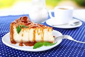 Cheese cake  in plate on polka dot tablecloth on nature background