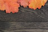 Autumn Background With Red Oak Leaves On Stained Oak Table