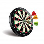Darts Target Isolated On White Vector