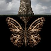 stock photo of environmental conservation  - Creative roots concept as a tree with a root shaped as a butterfly as a powerful environmental metaphor or symbol for inner thoughts and strong creativity foundation - JPG