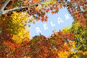 concept of relax