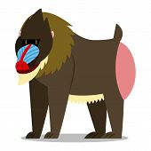 Vector Cartoon Mandrill Isolated On Blank Background