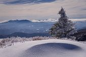 picture of appalachian  - Hiking along the Appalachian Trail with snow drifts on both sides of the trail as we look over the peaks and valleys of the distant mountains from the top of Round Bald at Roan Mountain - JPG