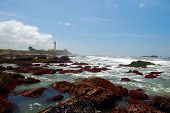 California coast at Pigeon Point Lighthouse in the background