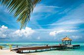 image of kuramathi  - Maldivian house on a tropical island - JPG