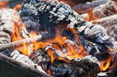 picture of flames  - Burning logs - JPG