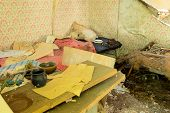 stock photo of abandoned house  - The interior of an abandoned house with lots of debris - JPG
