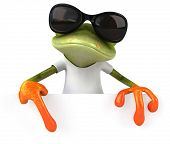 stock photo of amazonian frog  - Frog with a white tshirt - JPG