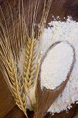 White flour in a wooden spoon with wheat ears, symbol of traditions and taste