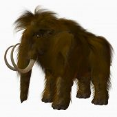 image of sabertooth  - 3 D Computer Render of an Woolly Mammoth - JPG